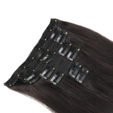 Alishow Hair Clip Hair Extensions Mix Color 14inch-24inch 100% Nature Remy Hair 7Pcs 100g #27/613 Blonde Human Hair in Clips