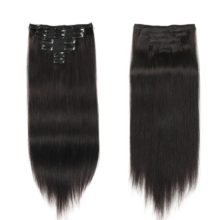 Alishow Double Weft Clip in Human Hair Extensions 100% Remy Hair 100gram/Set 7pieces Full Head Long Straight Hair