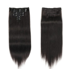 Human Hair Extensions Clip in Remy Hair full head Double Drawn Nature Human Hair in Clips Straight Hair Extensions 100g