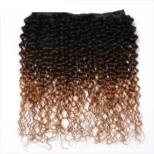 Spark Ombre Human Hair Afro Kinky Curly Brazilian Hair Weave Bundles 3 or 4 Bundle Deals Remy Hair Extensions For Black Women