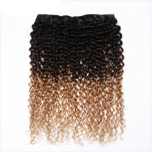 Ombre Peruvian Kinky Curly Hair Bundles 1B/4/27 &30 Blonde Color 3 Tone 100% Human Hair 1/3/4 Bundles Remy Hair Extensions