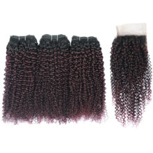 Kinky Curly Ombre Bundles With Closure Grape Purple Brazilian Hair 3 Bundles With Closure Red Burgundy Bundles Pinshair Non Remy